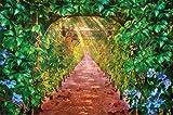Foto tapiz sarmiento mural de decoración uvas de vino Pergola avenida jardín de otoño camino enrejado parque natura I foto-mural foto póster deco pared by GREAT ART (210 x 140 cm)