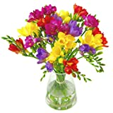 Clare Florist Gorgeous Scented Freesia Fresh Flower Bouquet