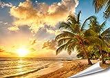 PMP-4life XXL Poster Strand in Barbados bei Sonnenuntergang HD 140cm x 100cm Hochauflösende Wanddekoration Bild für Wandgestaltung Wandbild | Fotoposter Karibik Sonne Sommer Palmen |
