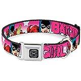 Buckle Down DCO DC Originals Schwarz/Silber Hund Halsband