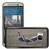 Grand Phone Cases Bild Hart Handy Schwarz Schutz Case Cover Schale Etui // M00141005 Cape Barren Gänse Gänse Tier // HTC ONE M9