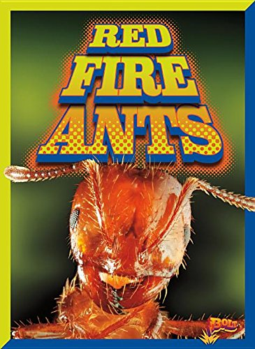 red-fire-ants-invasive-species-takeover