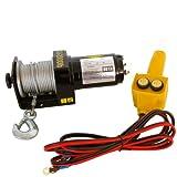Carpoint 0623428 Elektronische Seilzug 1000 Kg 12V 15m
