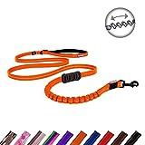 EzyDog Zero Shock Lite Hundeleine Rückdämpfer für Kleine Hunde - 120cm 180cm - Reflektierende für maximale Sicherheit - Elastische Leine Mit Bungee Ruckdämpfer (180cm, Orange)