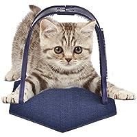Sue Supply Masajeador para Gatos, Juguete de plástico, Portátil, para cepillar, Jugar y Arañar el Pelo