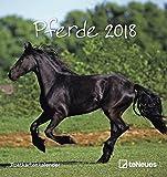 Pferde 2018 - Postkartenkalender, Tierkalender, Pferdekalender  -  16 x 17 cm