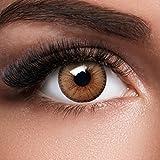 GLAMVUE Dubai Brown + Behälter I Sehr stark deckende natürliche braune Kontaktlinsen farbig I 1 Paar (2 Stück) I DIA 14.00 I ohne Stärke