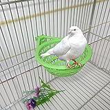 Girasool Vogelnest aus Kunststoff, hohl, zum Aufhängen, für Eier, Schlüpfen, Finken, Papageien, Kanarienvögel, 17 x 12 x 6 cm