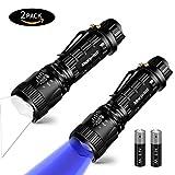 UV Lampe & LED Taschenlampe