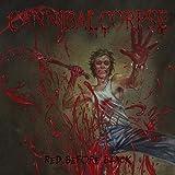 Underground Metal Konzerte Muenchen- Cannibal Corpse • The Black Dahlia Murder | Backstage München