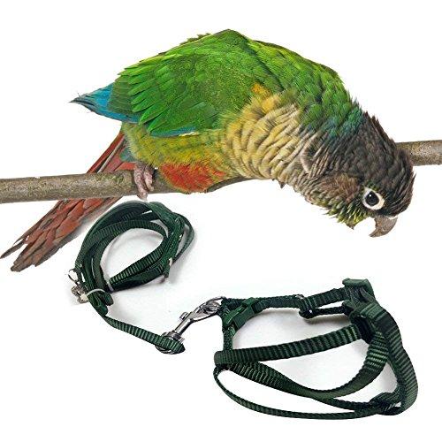 XuBa Zuggurt für Papageien, verstellbar, für den Außenbereich, zufällige Farbe, Klein, S