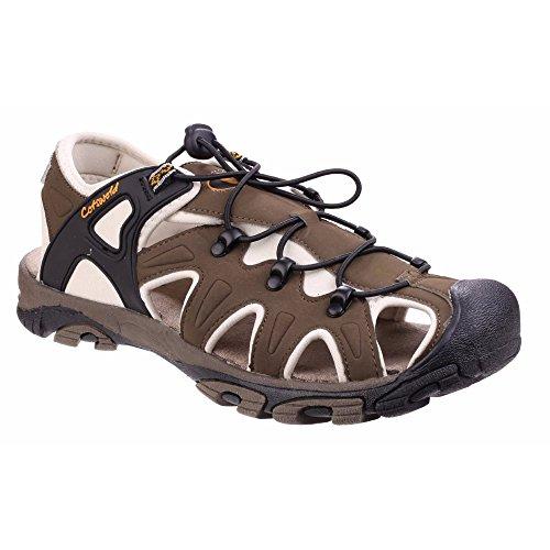 Costwold Littleworth - Sandales de randonnée à bout fermé - Homme Kaki
