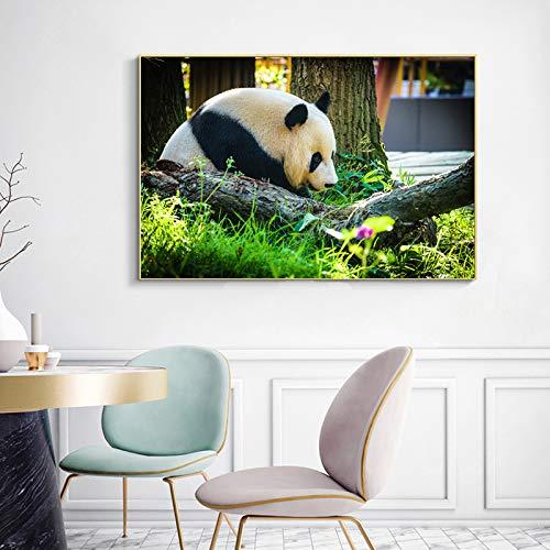 Moderne kunst tier poster und druck wandkunst leinwand malerei panda lion deer tiger pferd bild für wohnzimmer dekoration (kein rahmen) A3 50x70 CM -