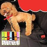 Aihien Pet Car Anco Teleskop Sicherheitsgurt Pet Leash Hund Auto Sicherheitsgurt