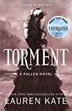 Torment: Book 2 of the Fallen Series