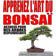 Apprenez l'art du Bonsaï: Astuces pour des arbres resplendissants