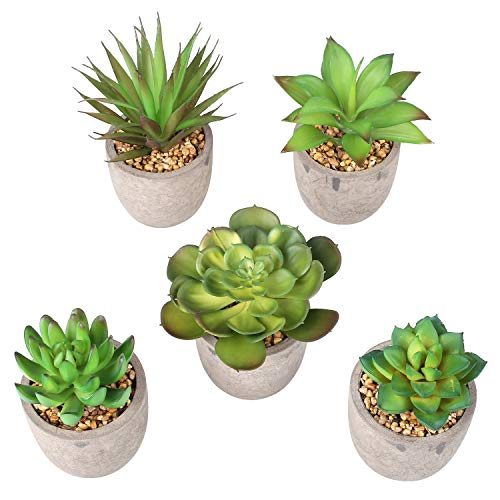 PEDY 5er Set Mini-Sukkulenten Kunstpflanze mit Grauen Topf künstliche gefälschte dekorative Pflanze Simulation-Pflanze Zimmerpflanzen Dekopflanze Tischdeko Haus Balkon Büro Deko