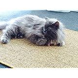 Premium Kratzmatte - Natur, 40x60cm ✓ 100% robuster Sisal ✓ Rutschhemmend ✓ Antistatisch   Katzen-Teppich, Katzen-Matte zum Wetzen der Krallen   Kratzteppich, Katzenkratzmatte geeignet für Fußbodenheizung   Sisalmatte, Sisalteppich für Wand & Boden