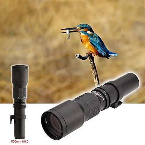 500mm / 1000mm F / 8.0 Manuelles Teleobjektiv + 2X Telekonverter + T-Halterung für Canon Nikon Pentax Digital SLR-Kamera,D Pentax Canon Digital Rebel