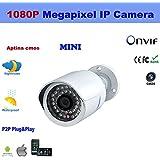 HuntGold 1X IPCC-B21N CCTV Caméra de sécurité Réseau Internet caméra IP moniteur Système de surveillance