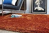 Teppich Wohnzimmer Carpet hochflor Design DIVA SHAGGY RUG 100% Polyester 160x230 cm Rechteckig Orange | Teppiche günstig online kaufen