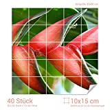 Graz Design 765007_10x15_80 Fliesenaufkleber Bromelien-Blüte für Kacheln | Wand-Deko für Bad/Küchen-Fliesen (Fliesenmaß: 10x15cm (BxH)//Bild: 80x80cm (BxH))