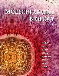 Molecular Cell Biology