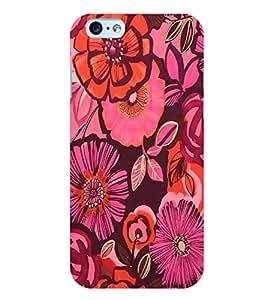 Citydreamz Colorful Floral Design Hard Polycarbonate Designer Back Case Cover For Apple Iphone 5/5S