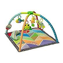 Infantino Pond Pals Activity Gym & Play Mat