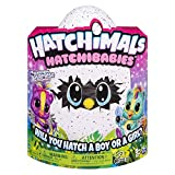 Hatchimals - 6044070 - Peluche interactive surprise - Jeu enfant - HatchiBabies Ponette