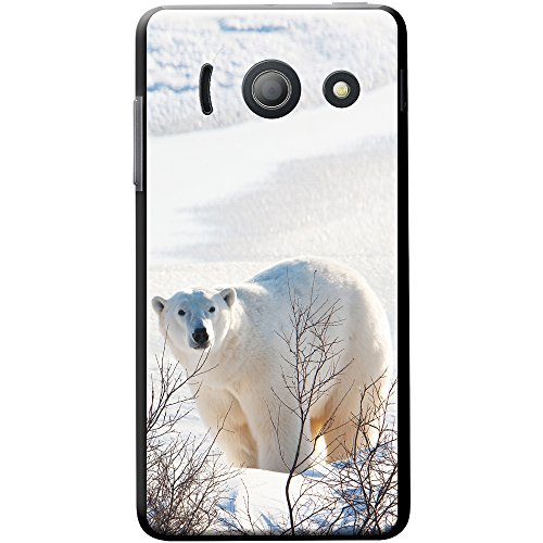 polar-bear-in-branches-and-snow-snap-on-hard-back-case-phone-cover-for-huawei-ascend-y300