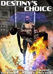 Destiny's Choice (The Wandering Engineer Book 3) (English Edition)