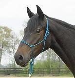 Busse Knotenhalfter Standard, Pony/Vollblut, Ocean Blue