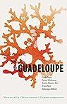 Nouvelles de Guadeloupe: Récits de voyage par Pineau