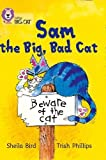Sam and the Big Bad Cat: Band 03/Yellow (Collins Big Cat)