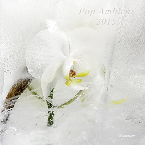 Pop Ambient 2015