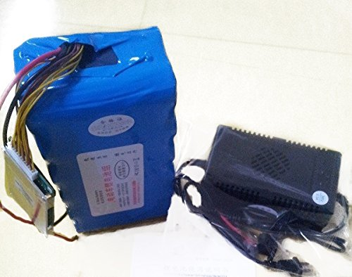 China Selection 24V 20AH LiFePO4 Eisenphosphat-Batterie mit BMS-Ladegerät für Elektrofahrrad (18cm*15cm*11cm)