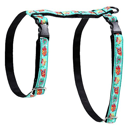 RC Pet Products 1/2Kitty Geschirr -