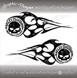 ADESIVI DECAL STICKERS SKULL IN SKULL FLAME SERBATOIO CUSTOM HARLEY DAVIDSON