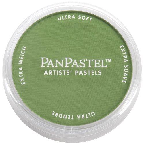 Pan Pastel Sofft-tools (PanPastel Ultra Soft Artist Pastel 9ml-Chromium Oxide Green)