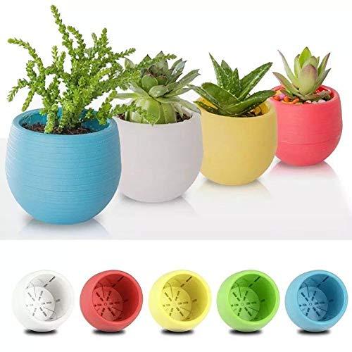 FAROOT 5 Pezzi Vaso di Fiori Pianta Succulente Cactus Vaso Fiori Giardino Piante grasse ABS filtrati.