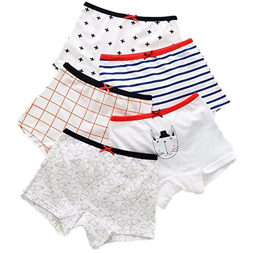 FAIRYRAIN Little Girls Kids 5Pcs Comfortable Cute Cartoon Boy-Leg Knickers Boyshort Underwear Boxers Briefs Panties