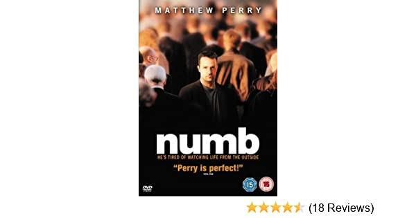 Numb Dvd Amazon Co Uk Matthew Perry Barry W Levy