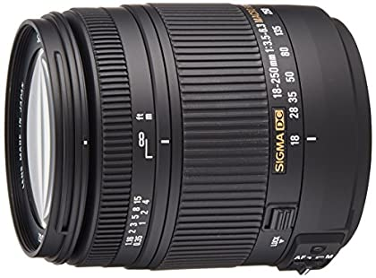 Sigma 18-250OS - Objetivo para cámaras Canon (estabilizador óptico, 1:2.9, filtro de 62 mm), color negro