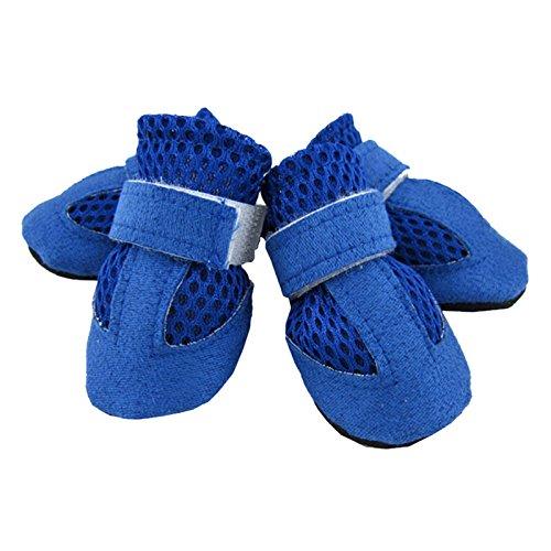 Hundeschuhe - TOOGOO(R)4 Stk. Hundeschuhe Pfotenschutz Hunde Schuhe Schutzschuhe Booties Hundestiefel Blau XL (Vor Bootie)