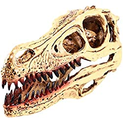 Esculturas de Cabeza Cráneo de Dinosaurio Raptor Modelo Resina Colección Decoración Barra Bar Rojos WHT
