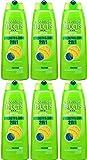 Sechs Flaschen Garnier Fructis 2in1Normal Shampoo 250ml