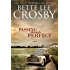 Passing through Perfect: A Southern Saga (The Wyattsville Series Book 3)