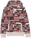 Tommy Hilfiger Jungen Sweatshirt AOP Flag Print Hd HWK L/s, Weiß (Bone White Heather 126), 14 Jahre