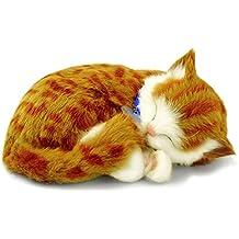 Amazon.es: gato interactivo - 5-7 años